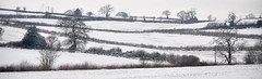 Snow in the fields (geoffspages) Tags: winter snow landscape geotagged shropshire geo:lat=5260883334397752 geo:lon=24936389923095703