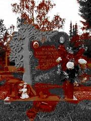 Wilde Wanda - Grave of the sole Viennese female souteneur  ~ Wiener Zuhlterin Wanda Kuchwalek (hedbavny) Tags: butch weiblich female famous famousfemale kultfigur unterwelt wienerunterwelt frau woman zuhlter pimp souteneur pander whoremaster ponce lesbisch lesbian original berhmt bekannt berchtigt flower blumenschmuck engel harfe baum tree 21 21bezirk zentralfriedhof stammersdorferzentralfriedhof zentralfriedhofstammersdorf stammersdorferfriedhof friedhofstammersdorf friedhof vienna austria 2 two zwo zwei due dva bild picture foto photo fotokeramik wildewanda wandakuchwalek grabstein graveyard cemetery camposanto cementerio cimetire cimiteri cemitrio cemeteries cementerios friedhoefe cimetires cimiteris cemitrios wien sterreich stammersdorf hedbavny ingridhedbavny