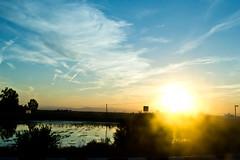 Dusty (Vluargh) Tags: sunset valencia tramonto puestadelsol albufera saler