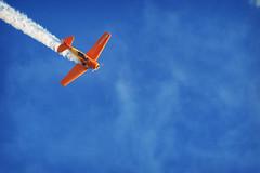 Free fall (Edi Eco) Tags: show brazil sky sport brasil canon airplane aircraft harvard 7d radical aviao oi ceu esporte aereo texan esquadrilha fumaca t6 acrobatic aeronautica piloto acrobacia 55250mm