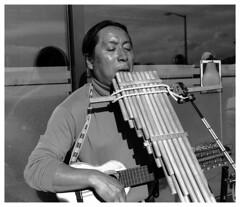 Andean Musician / Msico Andino  #1 (azoinamidol1) Tags: seattle andeanmusic xd11 streetmusician plusx panpipes zampoa pikeplacepublicmarket musicacallejera pandalab msicaandina 35mmrokkor zampolla