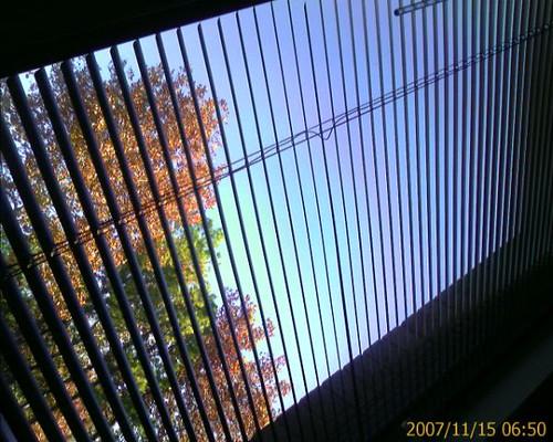 20071115_91245