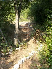 The way to the beach I (Villa Magemenou) Tags: lefkadaisland nikiana picsfromvillamagemenou