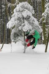 IMG_0172_1 (photophergraphy) Tags: wood tree bike aachen wald baum avalanche lawine