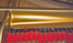 Gambiarra modelo D (Carlos Gustavo Kersten) Tags: steinwaysons armação pianista modeld gambiarra ignorancia burrice afinação quebragalho maucarater afinaçãodepianos profissionaldesqualificado