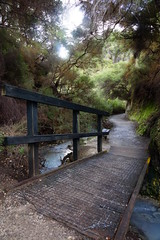 Nz park 1 (Nuxis [Davide]) Tags: newzealand nature way sony parks nz a77 naturalpark alpha77