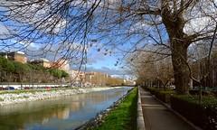 Río Manzanares, Madrid. (M Roa) Tags: worldwidelandscapes blinkagain rememberthatmomentlevel1 rememberthatmomentlevel2