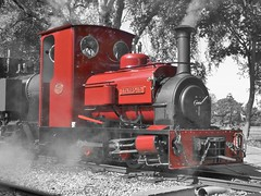 All Red Statfold at Pages Park, Leighton Buzzard Narrow Gauge Railway (gooey_lewy) Tags: new red white black buzzard build edit leighton hunslet statfold 040st leightonbuzzardnarrowgaugerailway expenrhyn allredstatfoldatpagespark