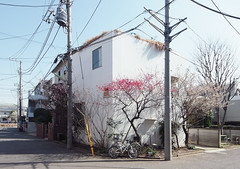 HOUSE IN A PLUM GROVE: Kazuyo Sejima, Tokyo, Dec. 2003 (wakiiii) Tags: