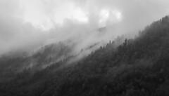 Fumo (Wrinzo) Tags: autumn italy mountain alps clouds europe italia nuvole piemonte larch larice autunno alpi montagna valgrande