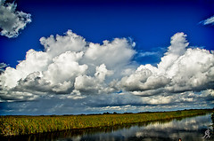 Clouds (Alessandro.Giorgi) Tags: blue sea sky panorama plants storm reflection water grass rain river landscape nikon nuvole mare escape horizon fiume erba cielo everglades tropic acqua azzurro lightblue tempesta riflesso orizzonte tropicale scappare d7000 cloudspioggia