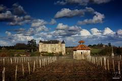 Luynes - #2 (DENISDROUAULT) Tags: france nature french ciel nuages loire vignes loirevalley paysages hdr touraine jimages chateau borderfx canoneos5dmarkiii denisdrouault chateaudeluynes logedevigneron