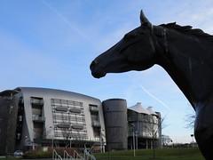 Red Rum (Toco67) Tags: sculpture horse sport liverpool artwork statues racing horseracing publicart redrum grandnational merseyside aintree cityofliverpool nationalhunt aintreeracecourse liverpoolcityregion merseysidesport
