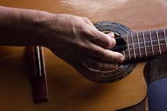 Cuban Guitar (SEAMANCRETE) Tags: elementsorganizer