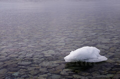 Last Of It's Kind (Ron Pettitt) Tags: ontario canada ice water stones greatlakes kingston