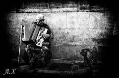 Musique canine (Xavier-A.) Tags: voyage france camargue xaviera justpentax