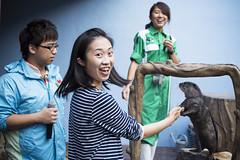 Surprisingly Happy (Nothing but everything) Tags: portrait animal wildlife otter 海洋公園 動物 oceanpark 人像 野生動物 水獺 nikkorais50mmf14 nikond800 飼養 攝影發燒友 飼育員 小爪水獺