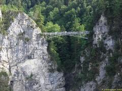 Neuschwanstein_07_06_2012_45 (Juergen__S) Tags: neuschwanstein castle disney cinderella bavaria bayern alps landscape outdoor mountain