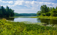 Morning On Kenoza Lake (Catskills Photography) Tags: lake water landscape sullivancounty hss canons95 summer clouds