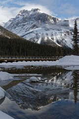 Reflected (bichane) Tags: emerald lake winter yoho national park snow bc canada president mountain reflected reflection water vertical