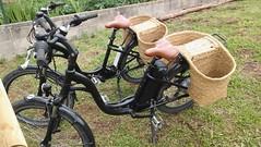 NATURATOURS Segway & Bikes Garrotxa BTT 6 (Segway & Bikes Garrotxa NATURATOURS) Tags: naturatours segway bikes garrotxa