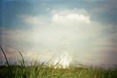 Daytime Dreaming (AirSonka) Tags: smena8m smena lomo analog analogue pelcula pellicule argentique film filmphotography 35mm kodakgold200 doubleexposure doubleexposed doppelbelichtung sky clouds grass smoke blurred powerplant lausitz jaenschwalde airsonka soniakaniss