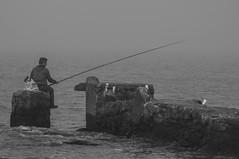 cadena alimenticia (Des oxirribonucleico) Tags: uruguay mar pescador soledad triste