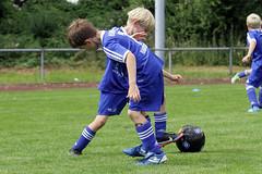 Feriencamp Pln 30.08.16 - b (39) (HSV-Fuballschule) Tags: hsv fussballschule feriencamp pln vom 2908 bis 02092016