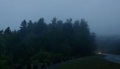 (elisecavicchi) Tags: evening dusk sundown gloaming dim gloom dark distant headlights car lone road winding travel roadside rural storm rainstorm fog mist obscure overcast treeline forest wood fenceline summer lines mood melancholy powerlines approach wind blow
