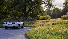 On Location During the Golden Hour (SteveFrazierPhotography.com) Tags: corvette 1995 clouds trees treeline weeds prairie grass beautiful highway136 illinois il usa unitedstates america stevefrazierphotography
