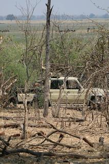 Namibia Dangerous Game Safari - Caprivi Strip 76