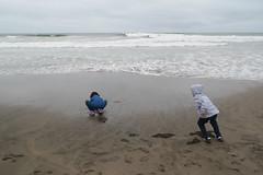 DSC_0289 (rlnv) Tags: california bayarea sanfrancisco nikond3300 1855mmf3556gvrii oceanbeach beach walter caitlin