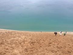 People Running Down 450-Foot Dune Lake Michigan Overlook #9 Pierce Stocking Scenic Drive Sleeping Bear Dunes (stevendepolo) Tags: people running down 450foot dune lake michigan overlook 9 pierce stocking scenic drive sleeping bear dunes