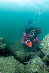 se3500_IMG_1082 (OKANO14) Tags: hong kong scuba diving