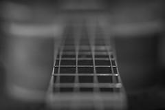 245/366 (Cassidy Jade) Tags: 366 366project cy365 uke ukulele instrument music stringinstrument bridge blackandwhite monochromatic 366the2016edition 3662016 day245366 1sep16