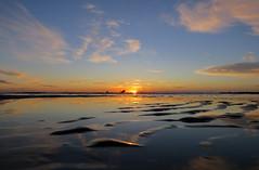 IMG_0030x (gzammarchi) Tags: italia paesaggio natura mare ravenna lidodidante alba sole nuvola riflesso