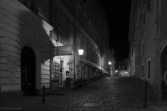 Nightshot in Vienna (PIXXELGAMES - Robert Krenker) Tags: vienna night nightshot blackandwhite bnw blacknwhite snapshot candid street old dark lamp laternfujifilm biancoenero monochrom schwarzweiss wien