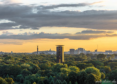 Tiergarten II (Alexander Steinhof) Tags: park wood city trees sunset summer urban sun berlin green nature architecture clouds canon garden landscape deutschland eos sonnenuntergang sommer natur himmel wolken son stadt grn landschaft sonne wald bume parc garten tiergarten siegessule siegessaeule 60d canoneos60d