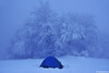Winter home (.:: Maya ::.) Tags: winter snow tree beauty frozen woods tent bulgaria beech зима гора палатка сняг mayaeye mayakarkalicheva маякъркаличева