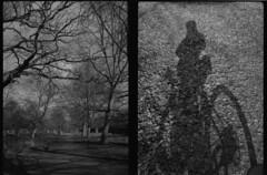 Richmond Park (boncey) Tags: olympuspenee3 olympus pen ee3 camera:model=olympuspenee3 film film:brand=arista film:name=aristalegacypro400 35mm iso400 film:iso=400 film:format=35mm diy homedev photodb:filmrollid=269 photodb:id=21950 richmondpark richmond surrey england bw blackandwhite monochrome bike people shadow me diptych freestylearistalegacypro agfar09oneshot film:brand=freestylearista film:name=freestylearistalegacypro400 developer:brand=agfa developer:name=agfar09oneshot legacy r09 filmdev:recipe=8332 arista legacypro aristalegacypro400 freestylearistalegacypro400 penorama