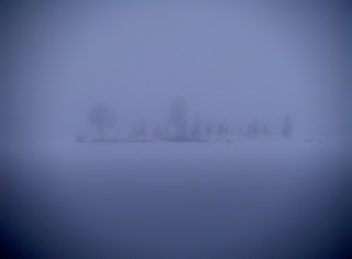 Winter island in fog