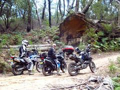 IMG_6747 (MattyVas's ) Tags: adv stateforest bmwdakar yamahatenere adventurebiking adventurebikies advbikes