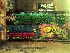 Meek Swan Jedi (Stranger to the System) Tags: new graffiti swan orleans tm jedi meek fyc