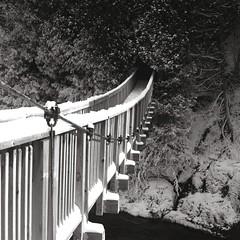 Hanging Bridge (Bill Smith1) Tags: hasselblad500cm ilforddelta100 hc110dilutionb 80f28zeissplanarlens occwinterphotographyouting2013