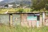 chabola (shack) (mdiactrl) Tags: costarica shack roadside puntarenas centralamerica chabola
