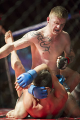 Cage-fighting: Made4thecage 9 (Mark Watson Photography) Tags: mixed jujitsu martial 4 arts 9 cage mount made ko fighting tko bjj mma