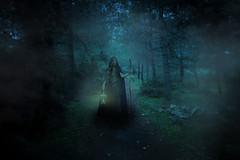 ELVEN LADY (Christos Tsoumplekas (Back again!)) Tags: mystery forest photoshop witch elf fantasy magical mythology tolkien myth elves elve