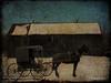Amish buggy (D.L.D.) Tags: tatot