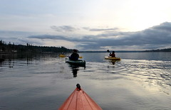 Kayaking the Kitsap (carpepiscem) Tags: pugetsound washingtonstate portorchard kitsappeninsula