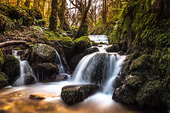 The Falls in Kilbroney Forest Park, Rostrevor. (Jarlath Gray) Tags: longexposure leaves forest woodland northernireland countydown warmcolours kilbroney mossyrocks 2013 kilbroneyforestpark jarlathgrayphotography kilbroneyriver